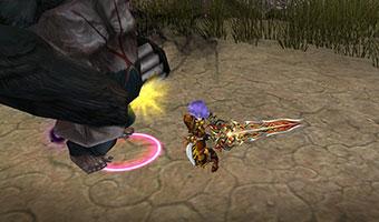 Fiesta Online Crusader